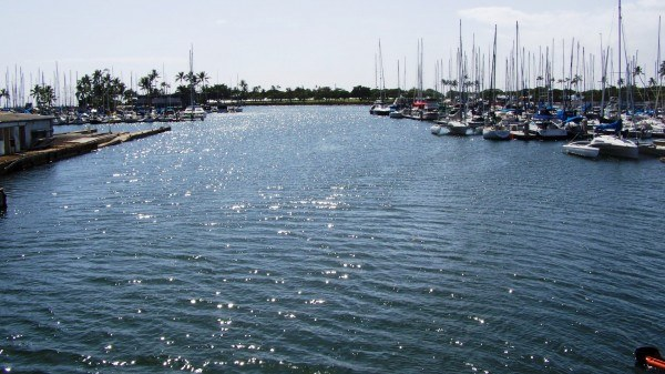 Mt_waters_blending_at_the_Ala_Wai_boat_harbor