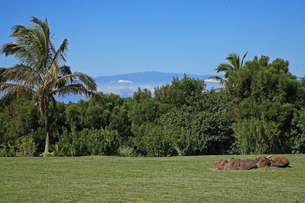7 acres of Ag land with home for sale near Hawi