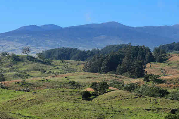 Mauna Kea Ranch 1000 acres Big Island for sale