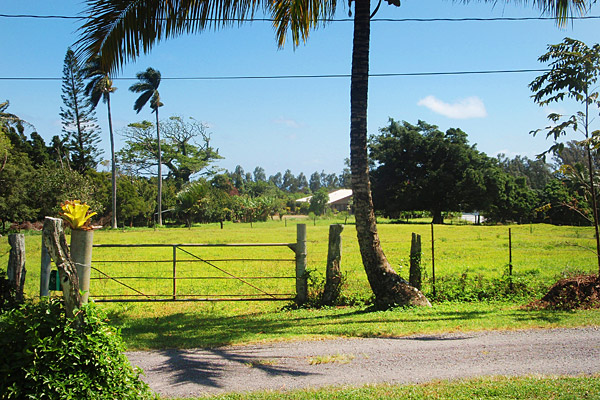 Acre for sale on Kapaau Rd
