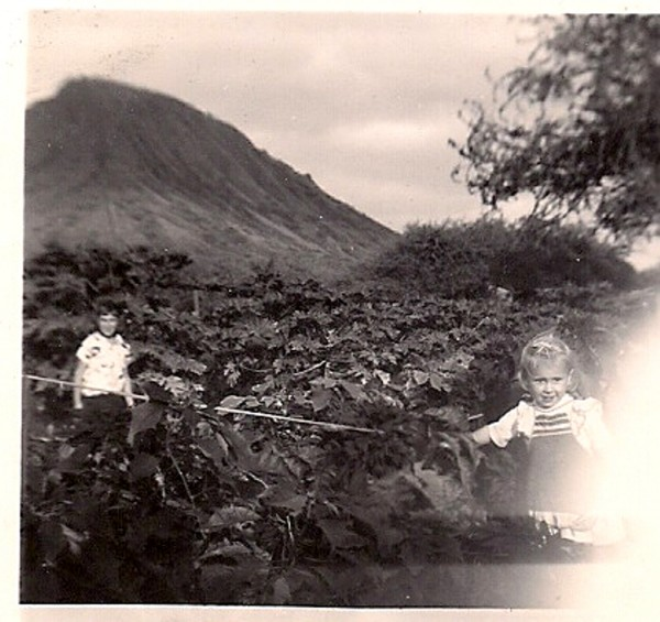 Papaya Patch at Koko Head-Jeanne & Malia 1951