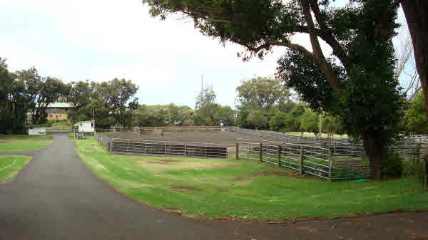 Ranch with roping arena for sale Big Island