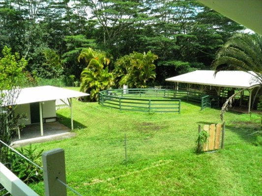 Pahoa Puna horse property for sale with home barn arena