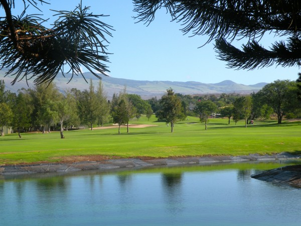 mountain, lake, 18 hole views from Elima Lani building #8