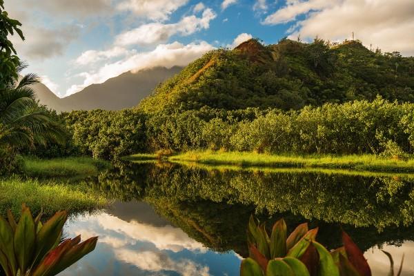 Waioli Stream and Mountains