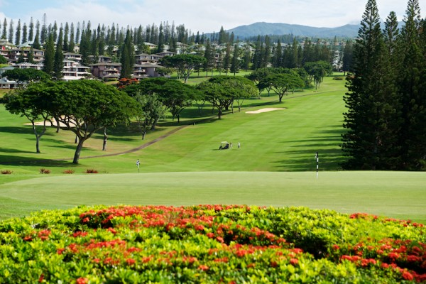 Kapalua Golf
