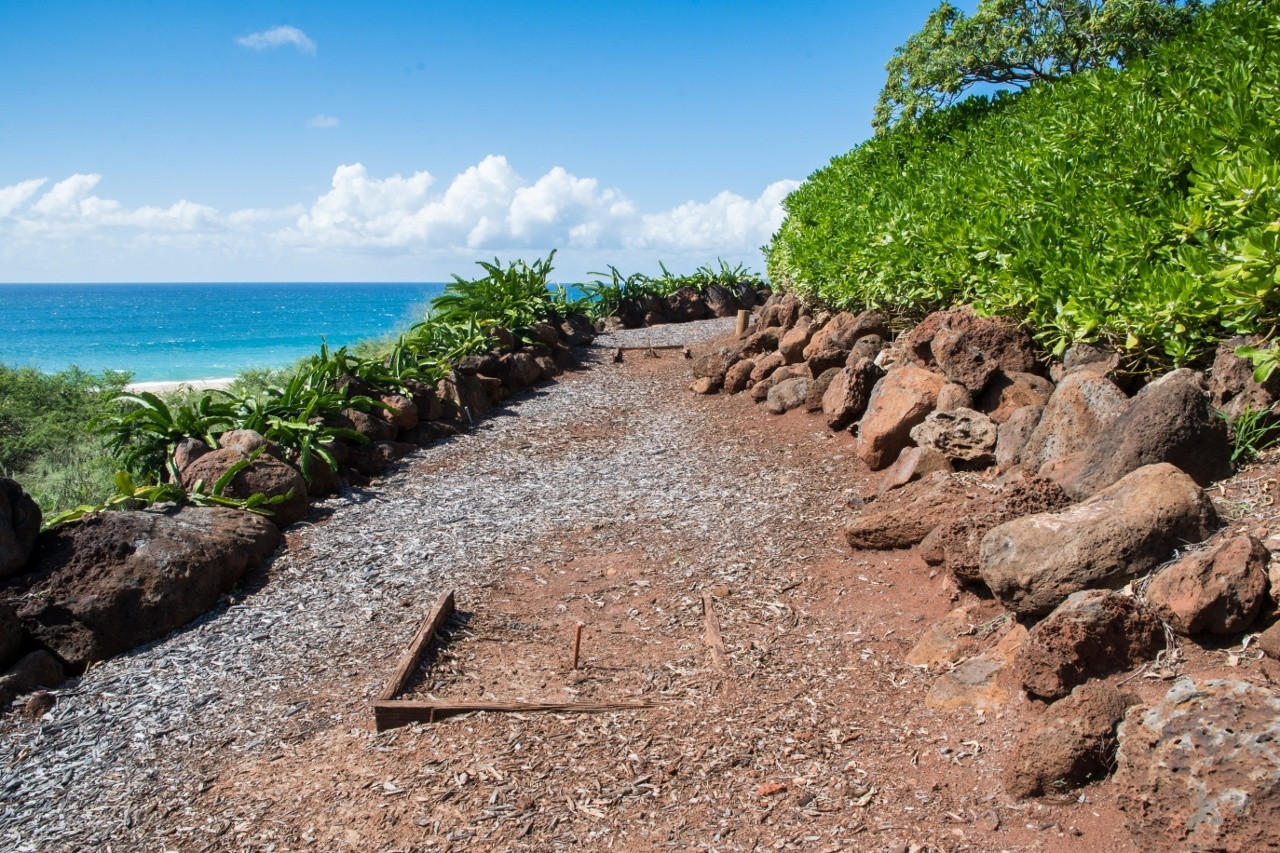 Ocean view regulation horseshoe pit