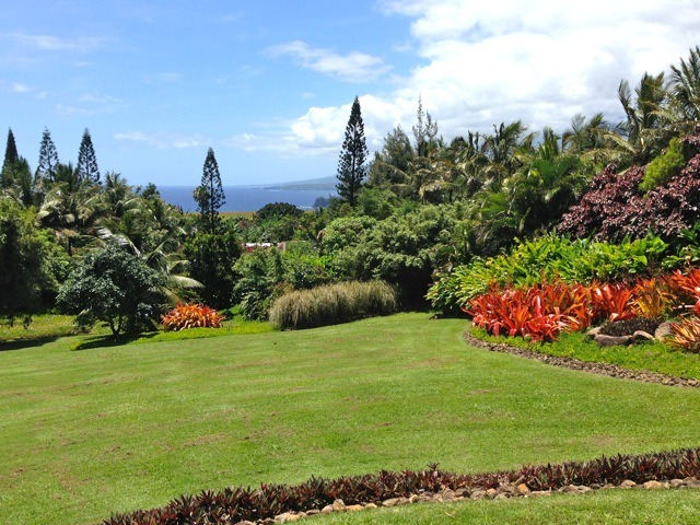 The view at 230 Door of Faith Rd, Haiku Maui