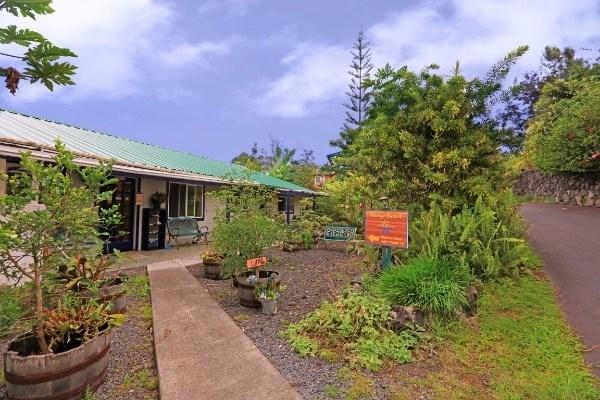 Mango Sunset B&B and Lyman Coffee Farm