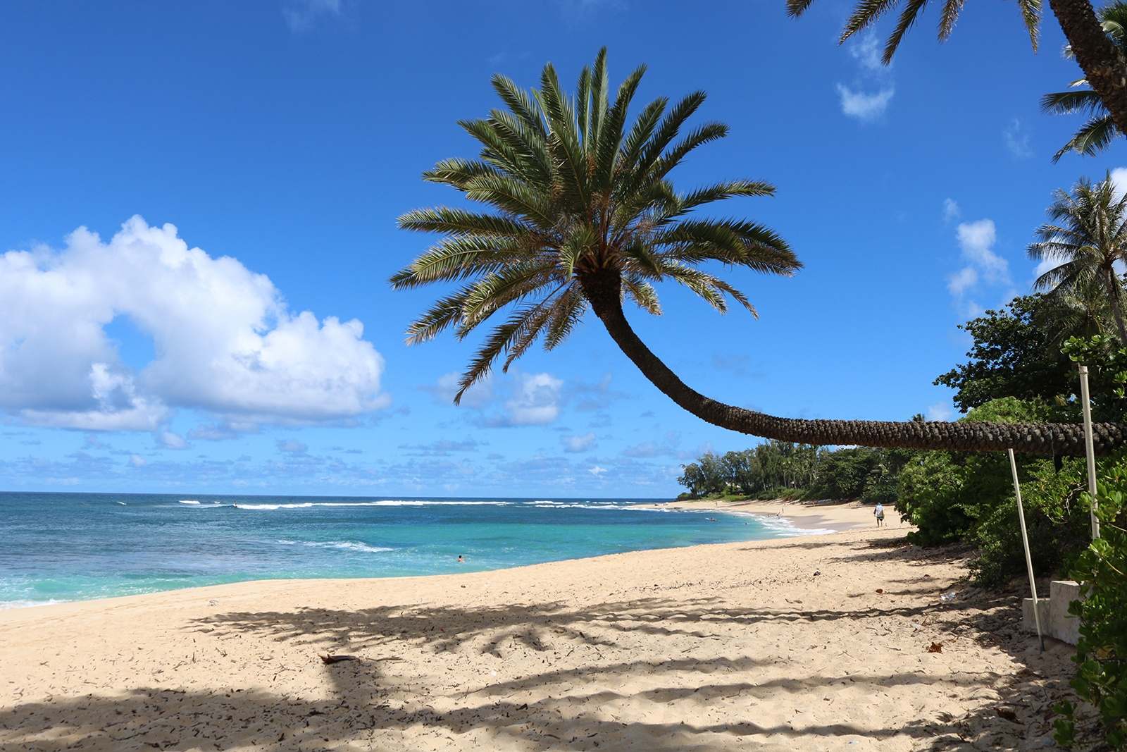 O Ahu S Incredible North Shore Is Perfect For Winter Waves Or Summer Splashing Hawaii Real
