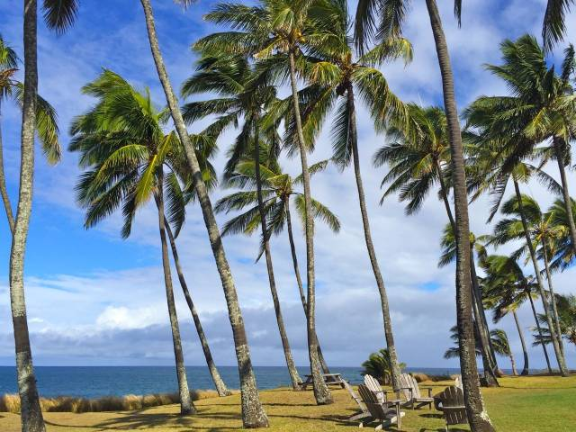 Oceanfront real estate for sale in Paia Maui
