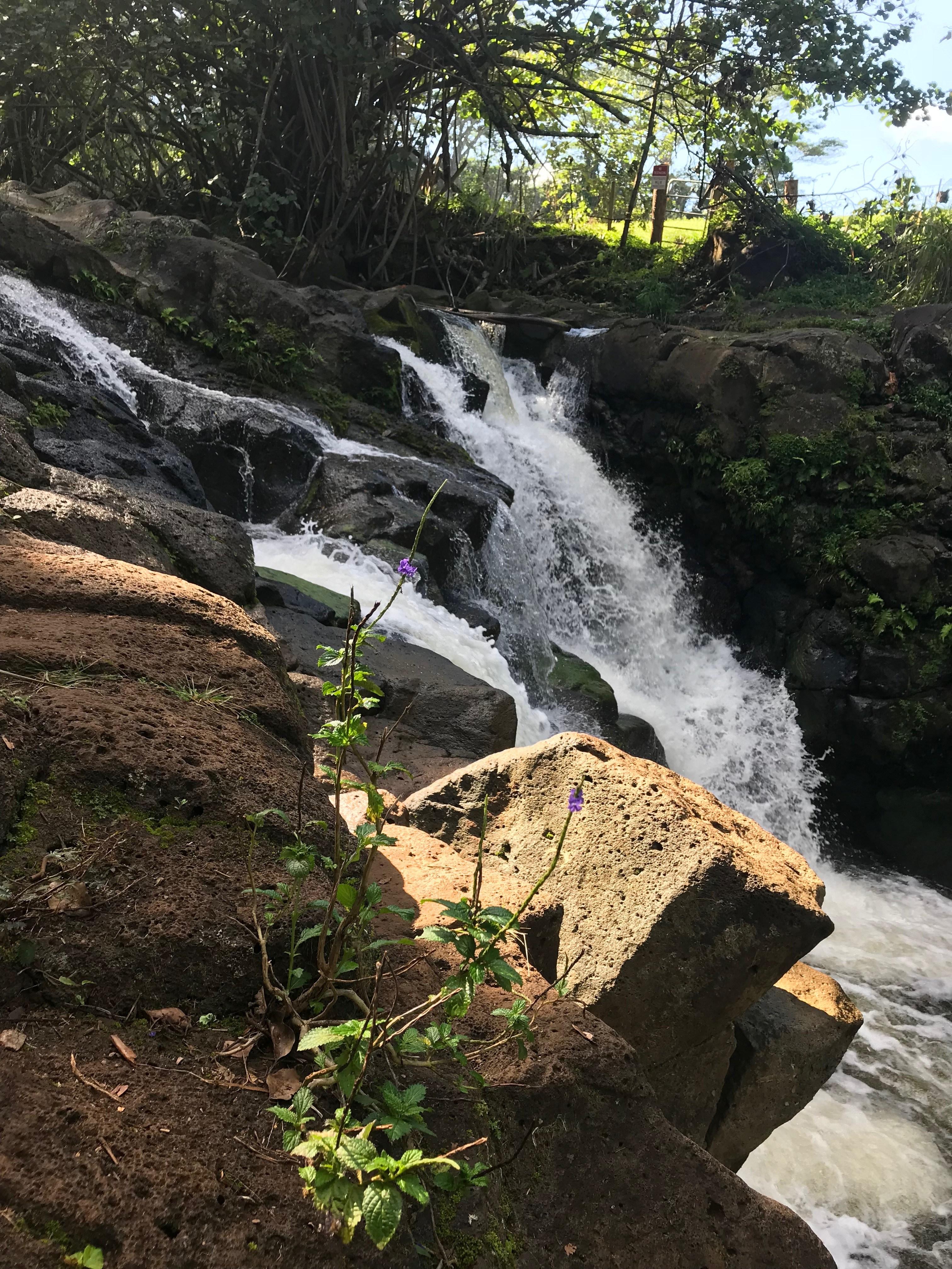 Hoopii Falls