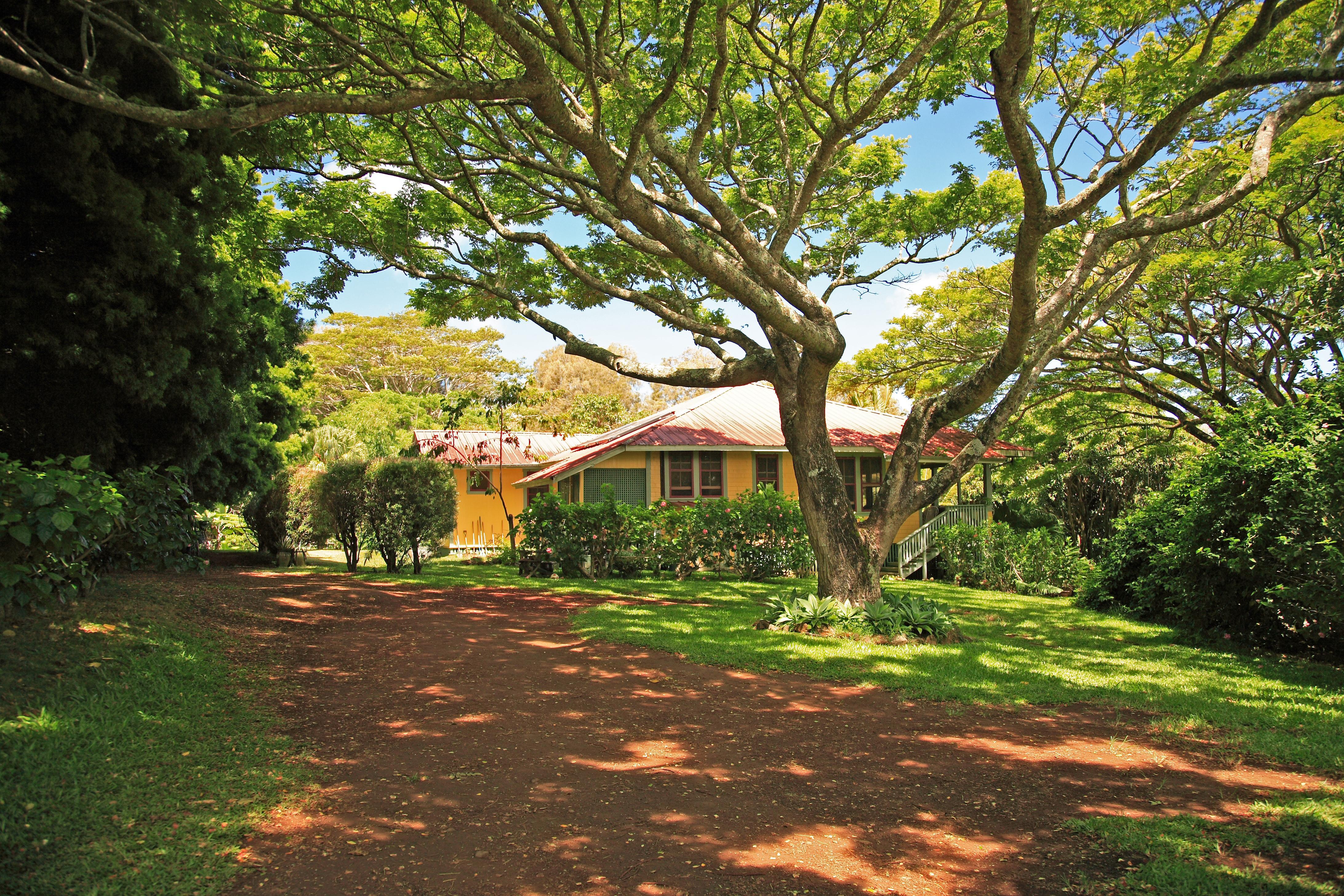 Plantation Era Home for Sale Hawi
