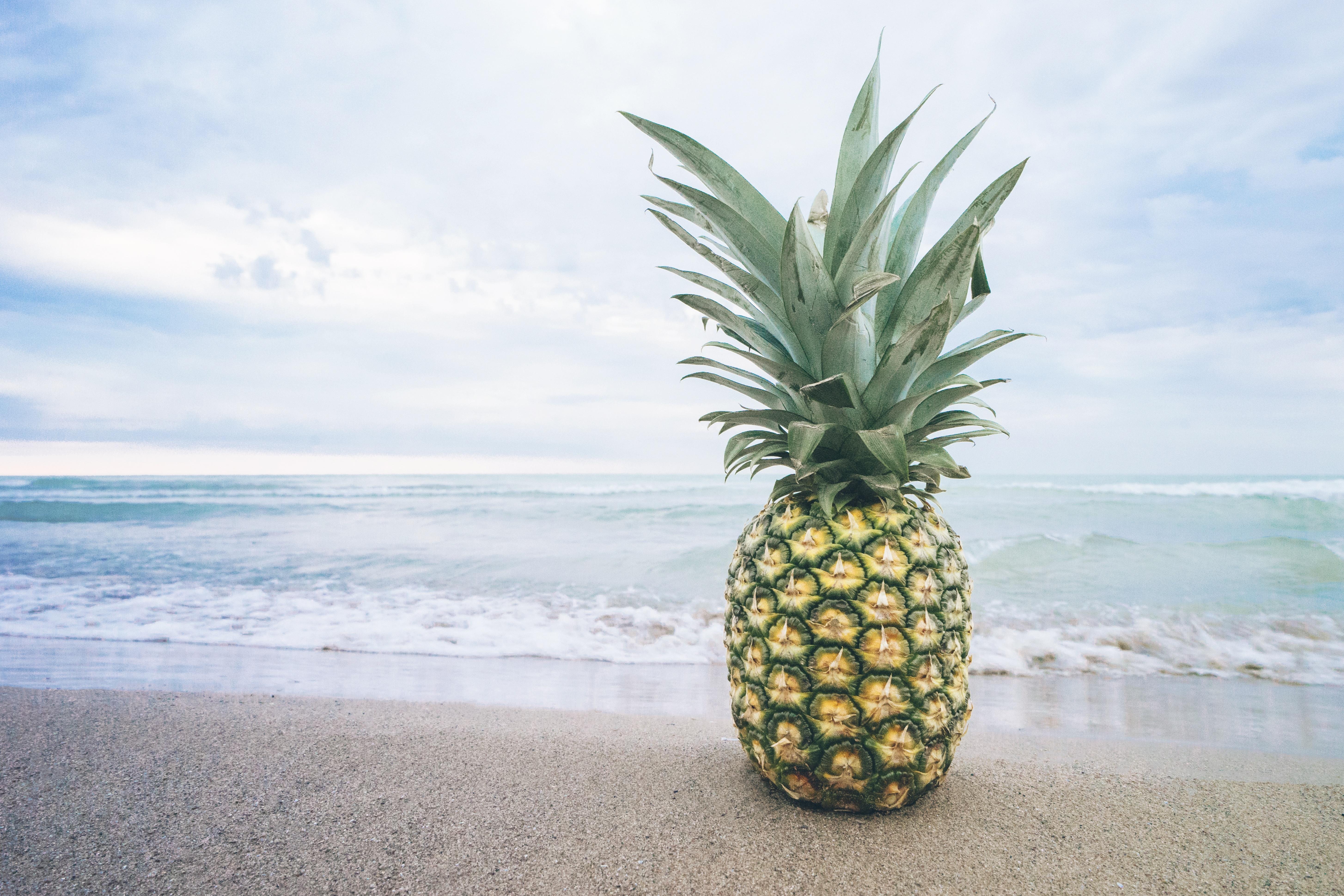 Hawaii Vacation Condo