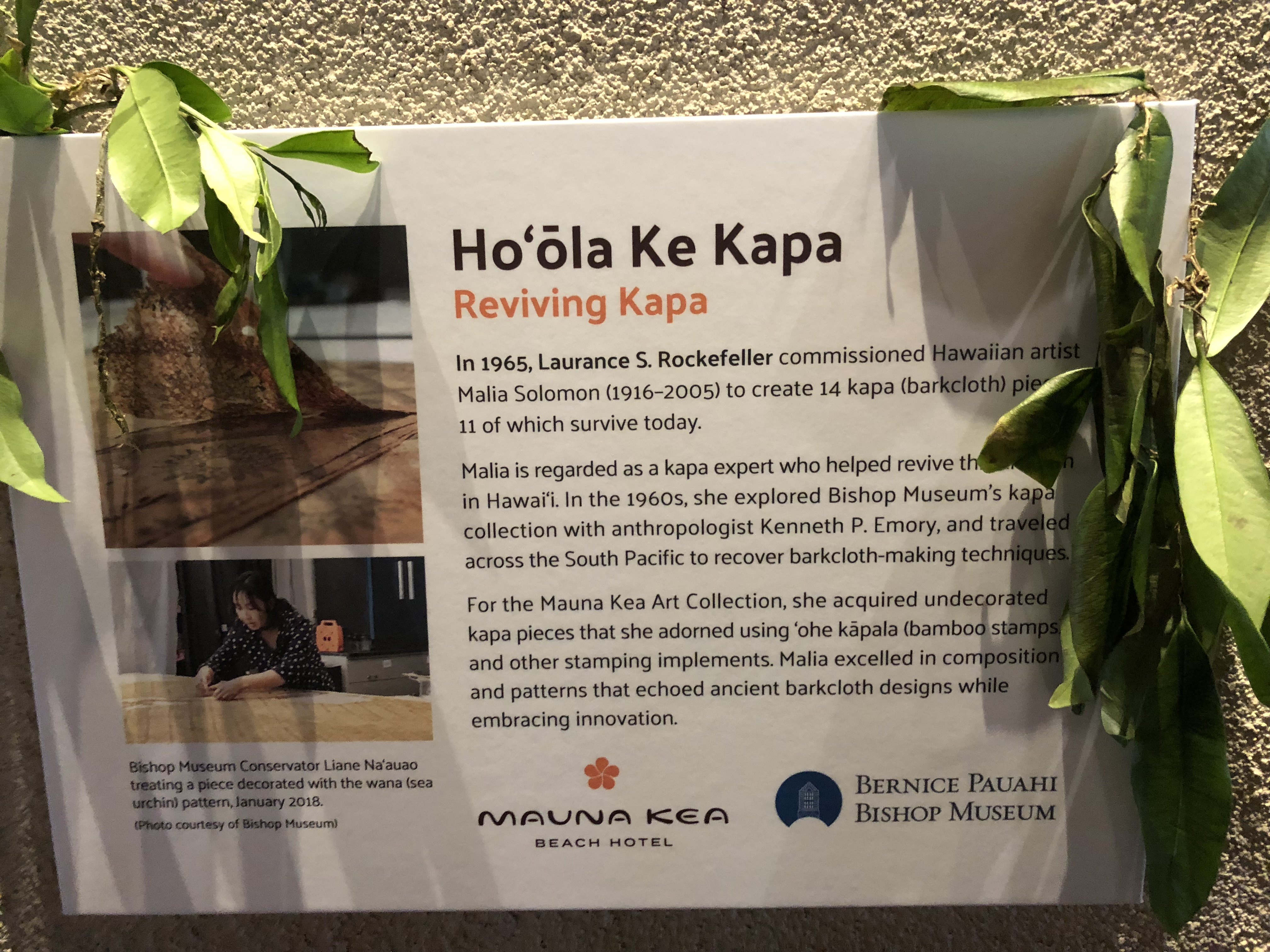 Restoration of Kapa Collection at Mauna Kea Beach Hotel