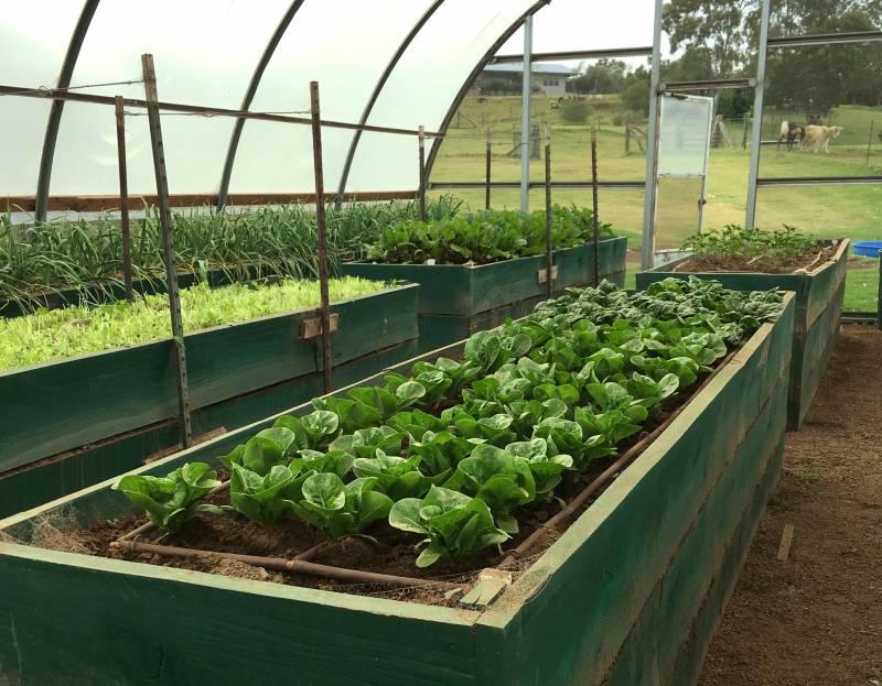 Real Farm at Waikii Ranch