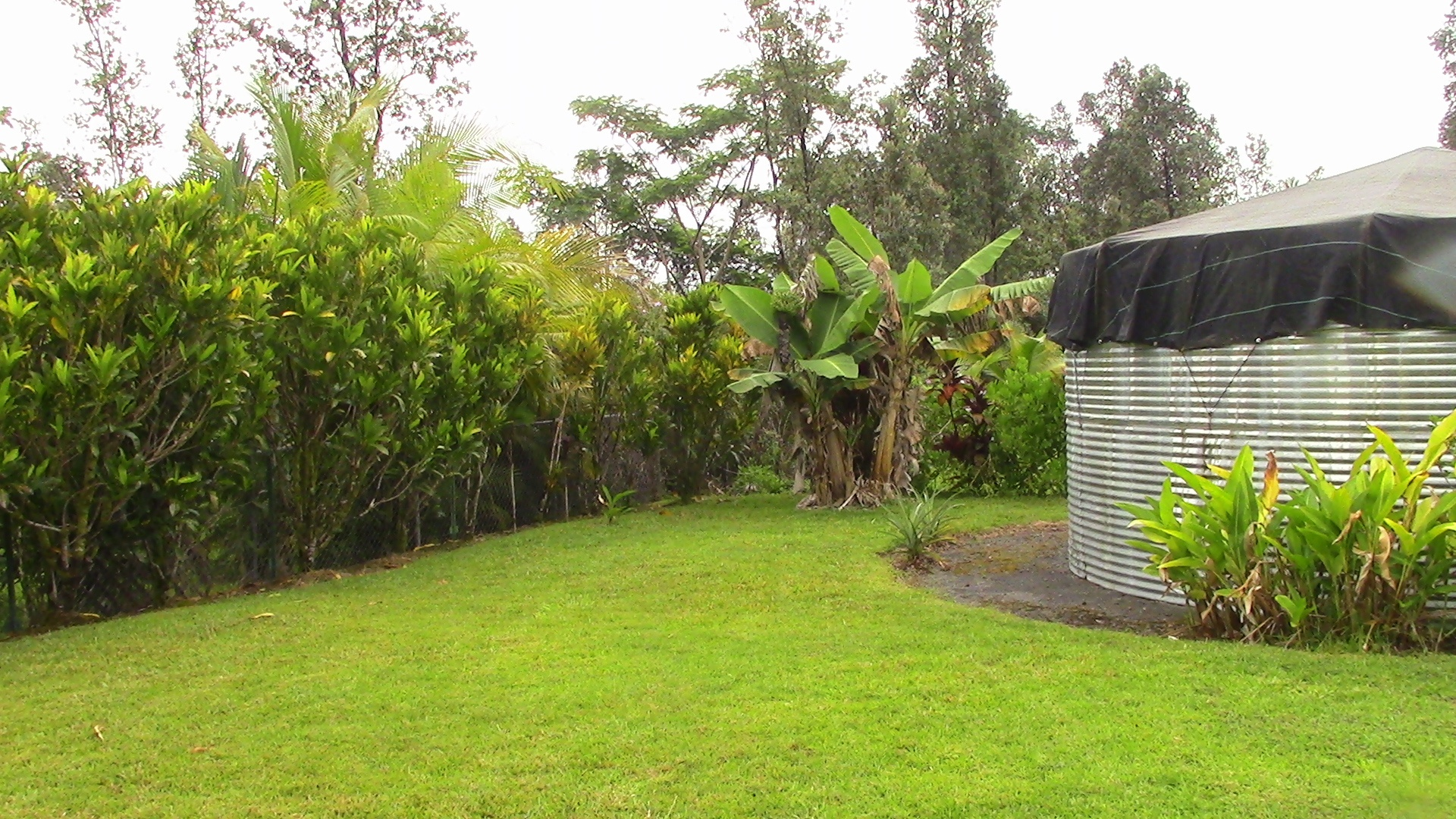 How To Protect Your Water Catchment Tank During The Eruption Hawaii Real Estate Market Trends Hawaii Life
