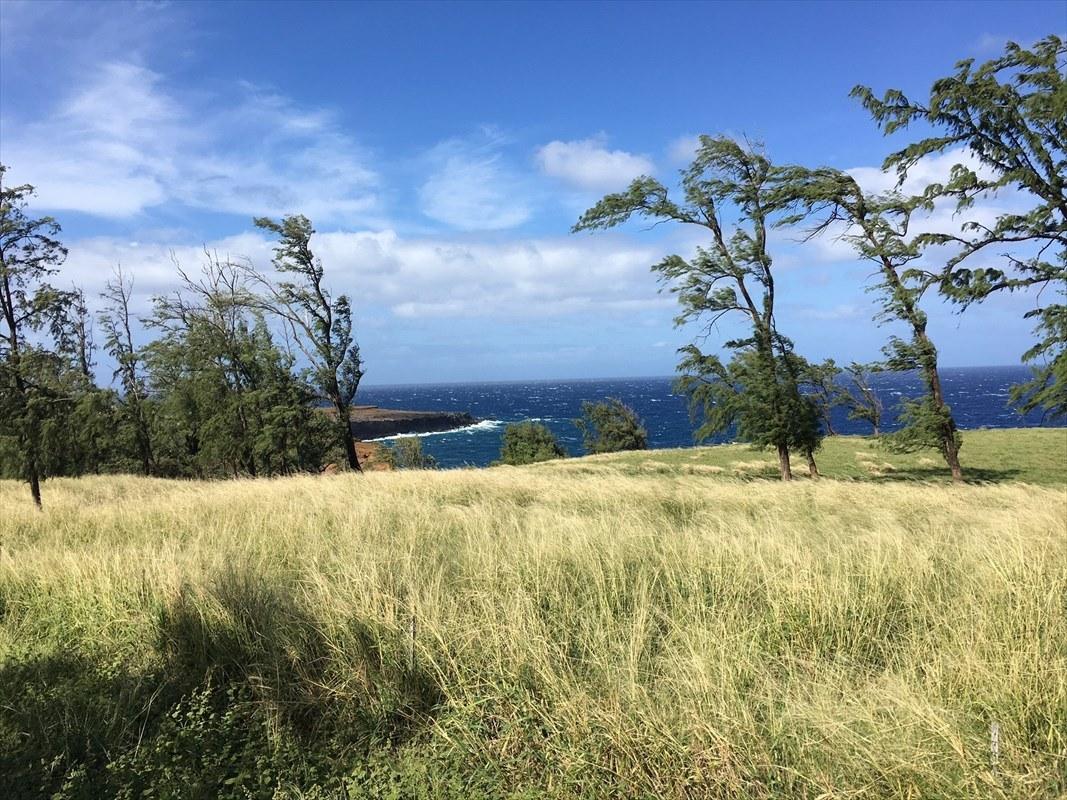 Hoea Road Oceanfront 16 acres