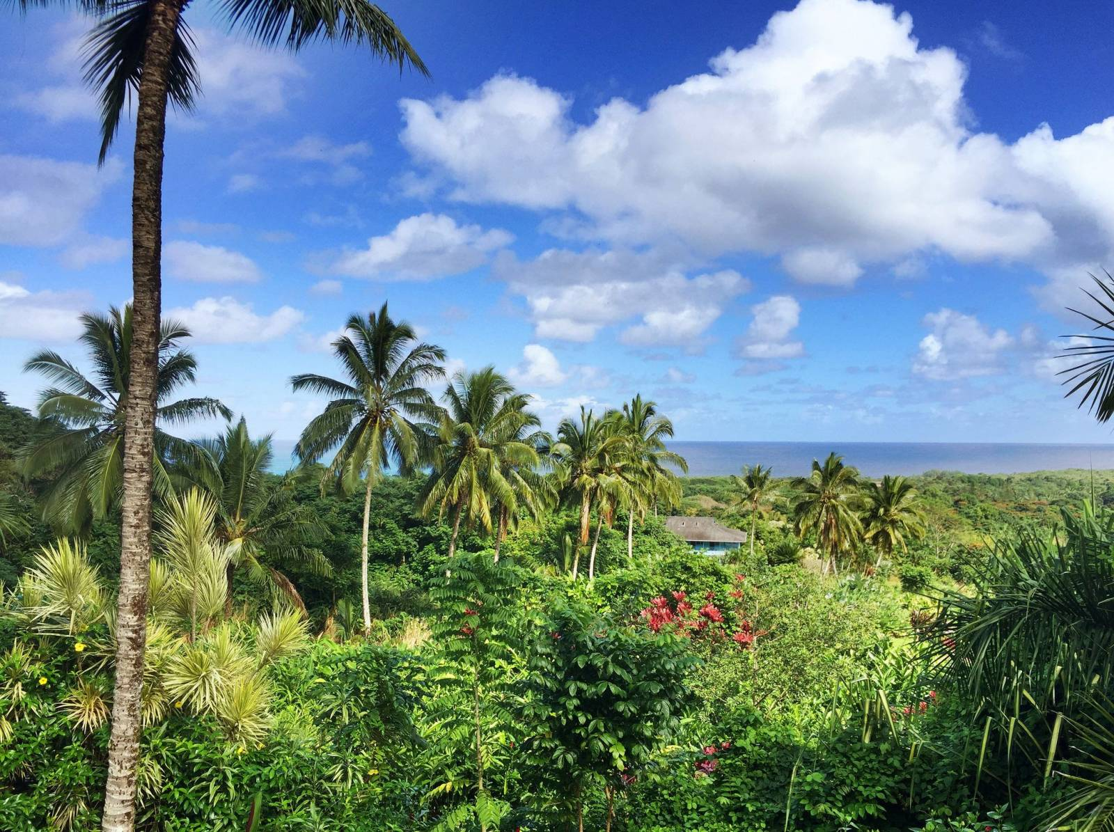 Selling your Maui property