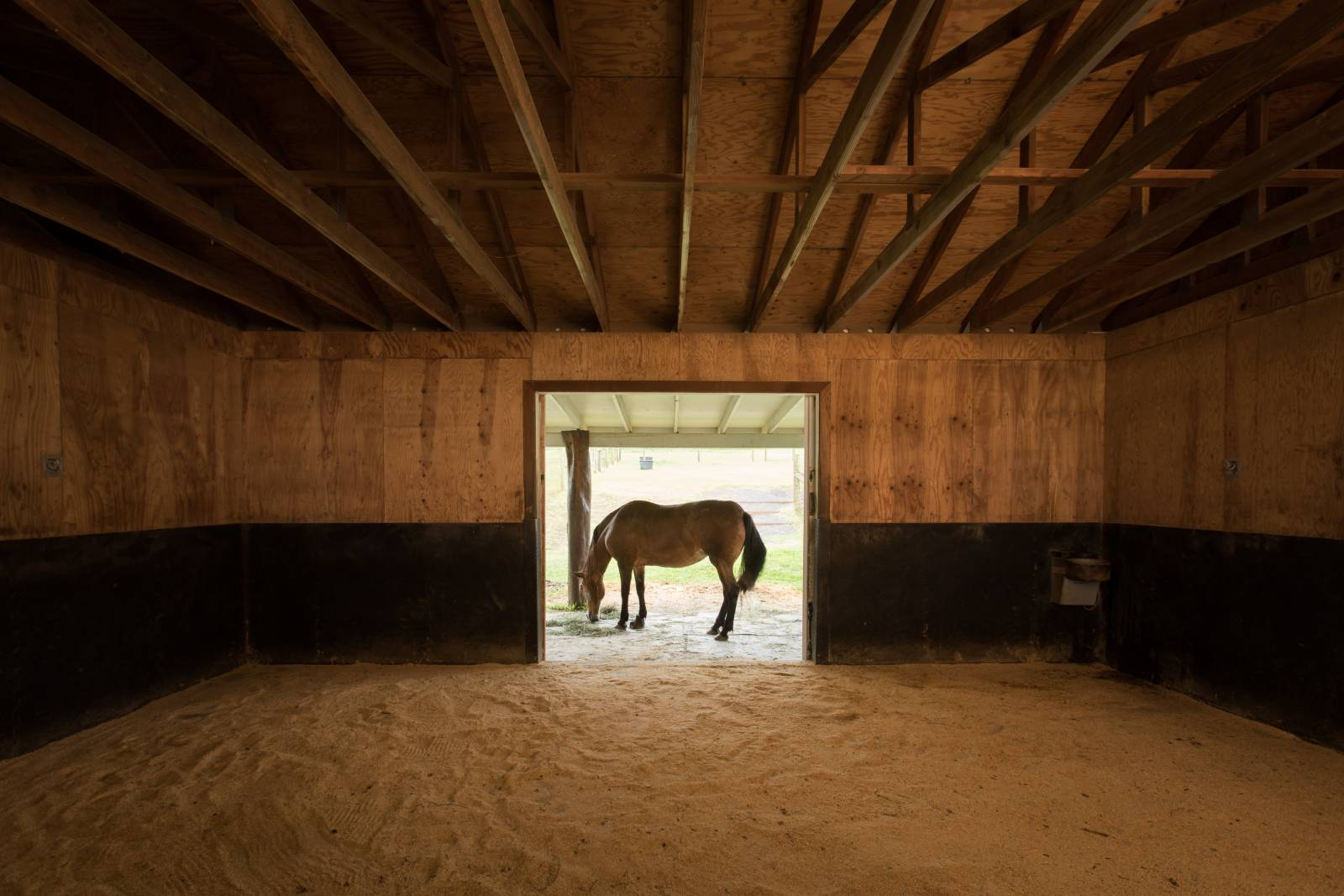 Property for sale with horse breeding barn