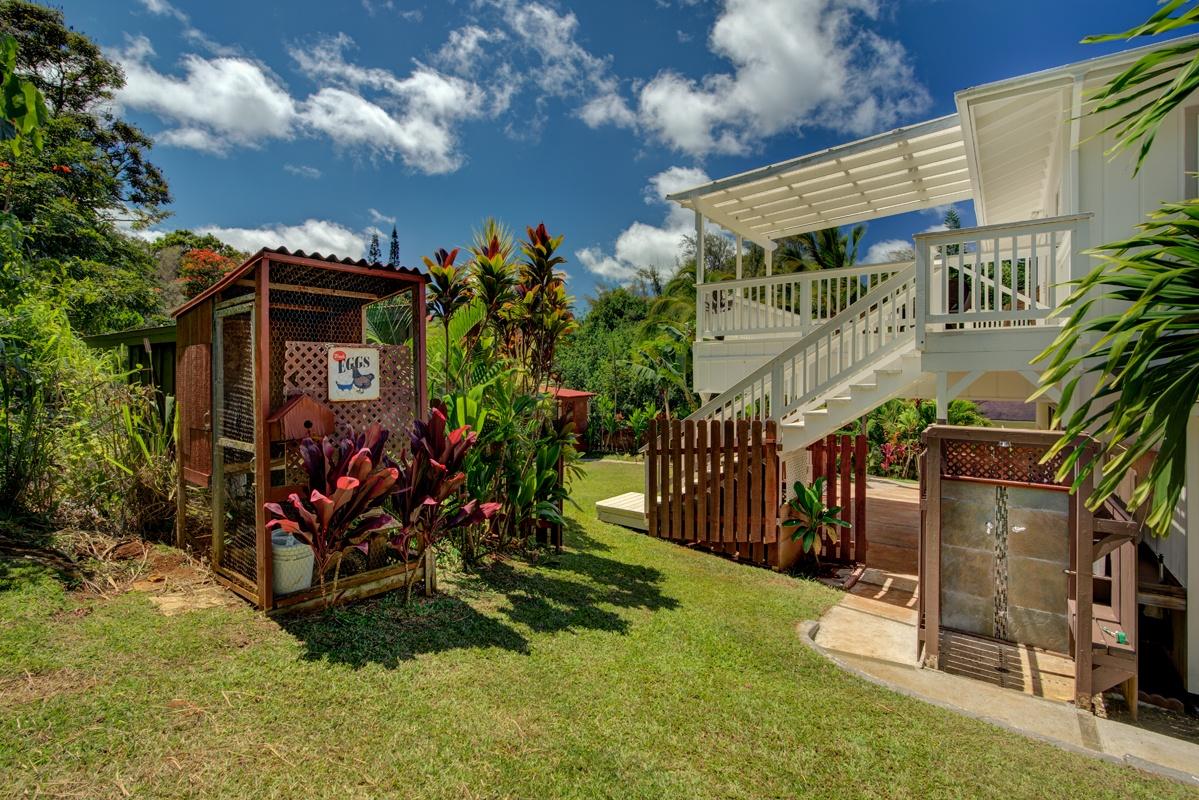 Waipouli Rd backyard