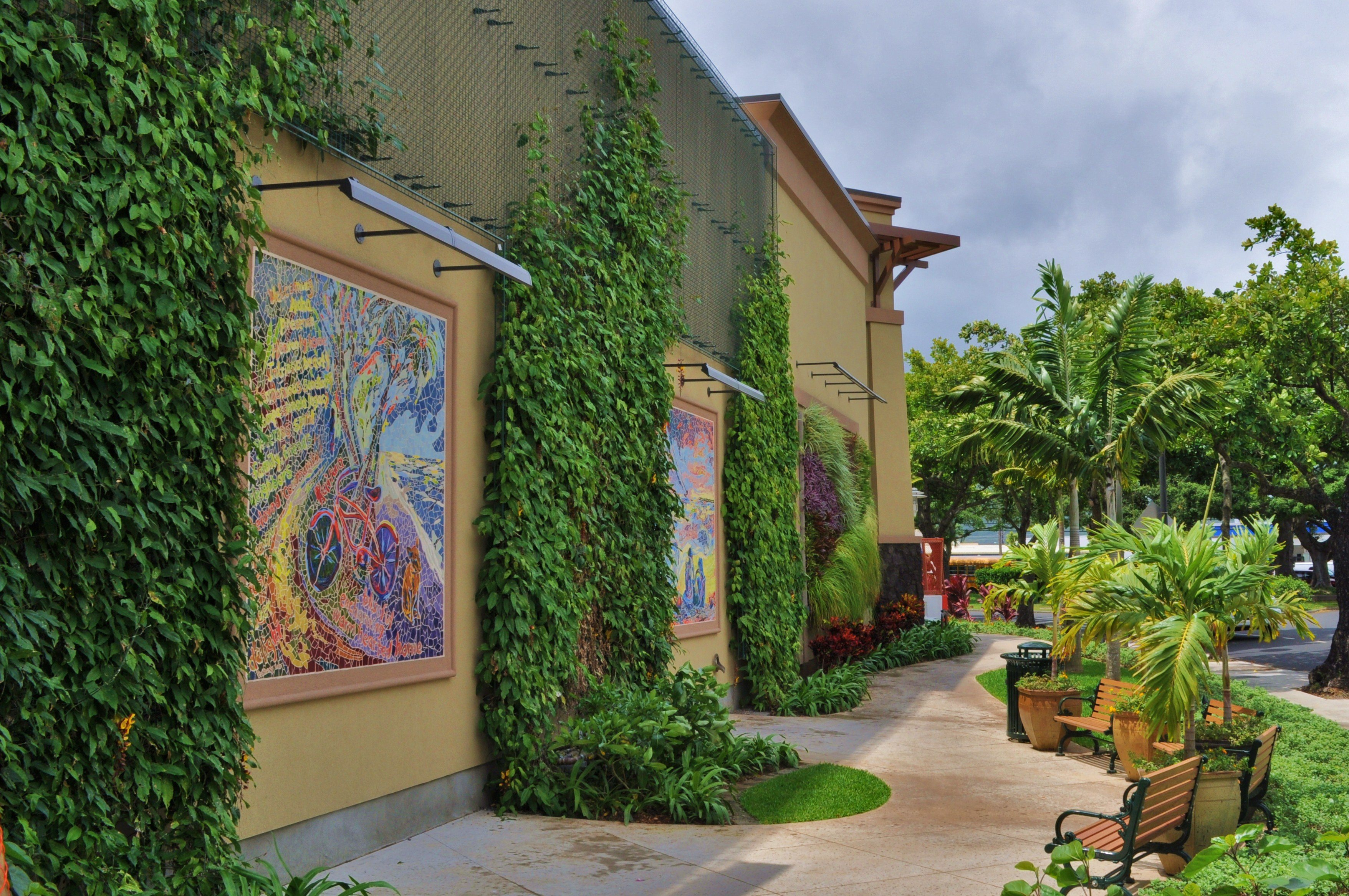 Living Wall at Kailua Whole Foods