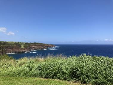 Oceanfront Parcel Kapaau private sale