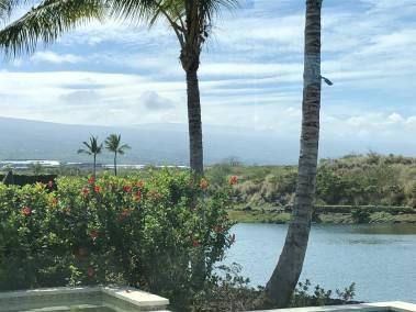 Kohanaiki Hale ʻAlani 41