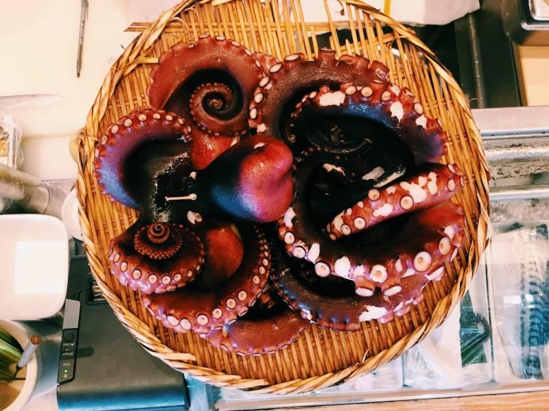 Morimoto Maui Octopus