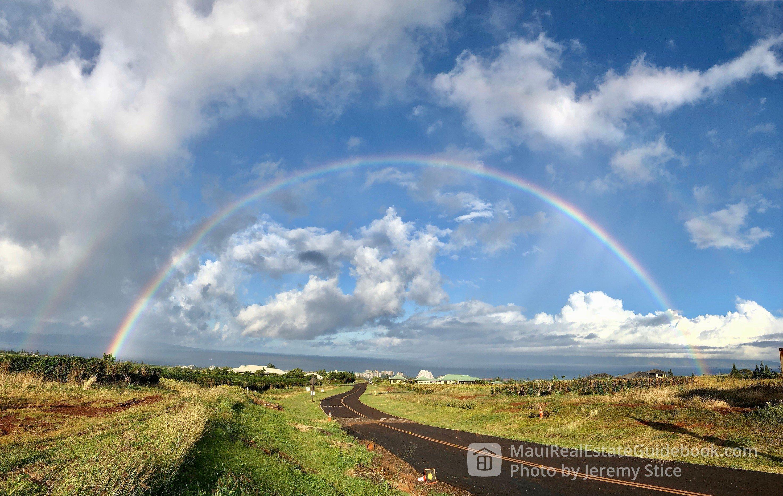 Massive Rainbow