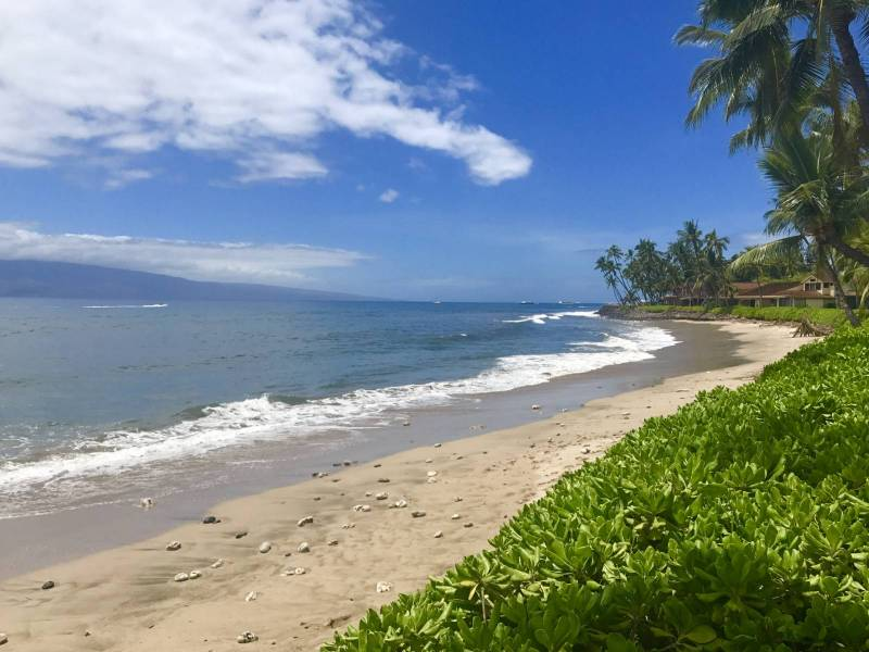 A Calm Summer Day In Puamana With The Beach Out Front