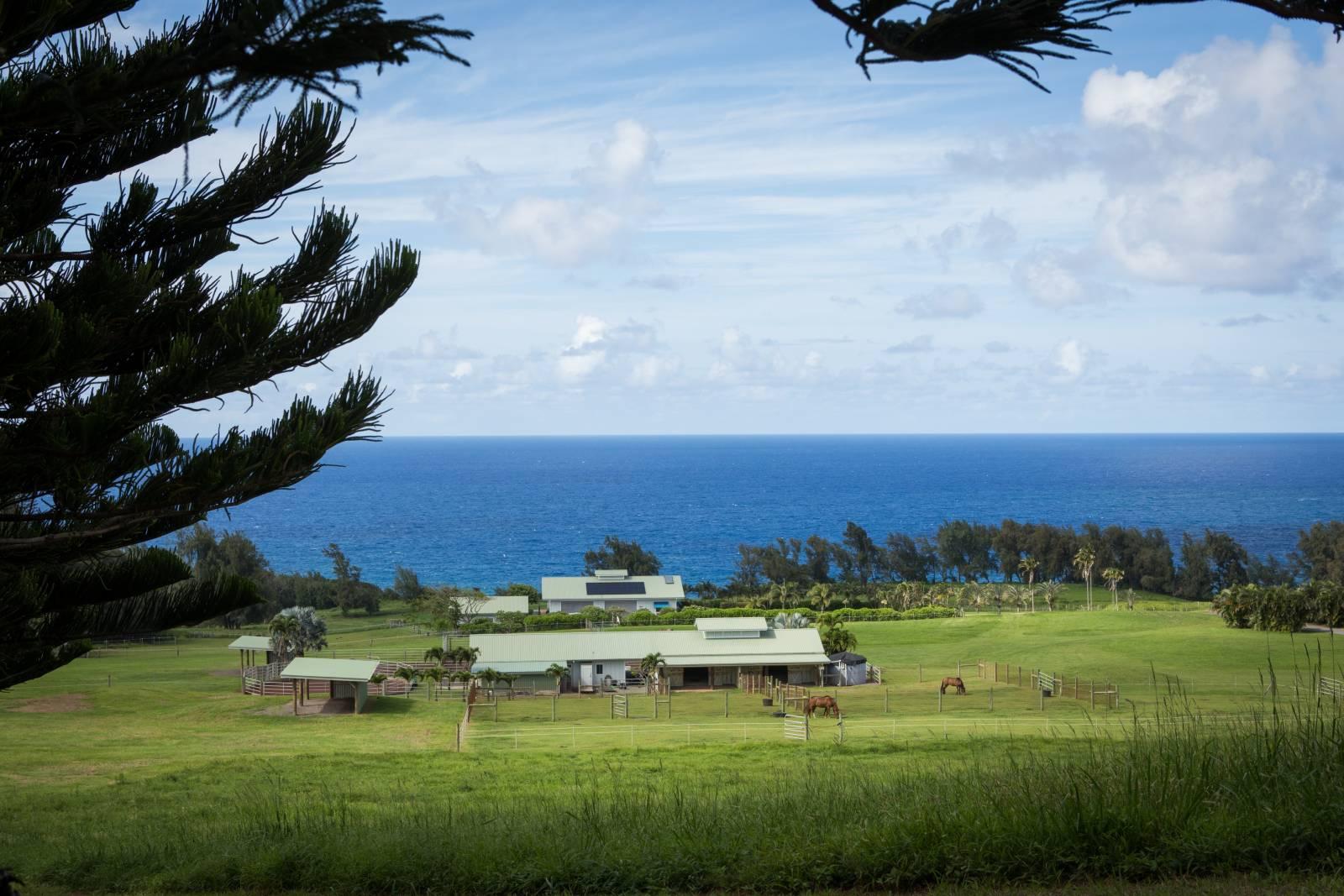 Ocean and equestrian facilities