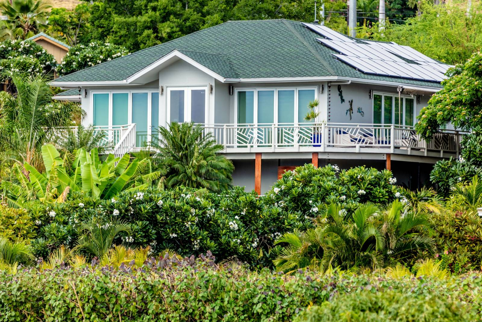 59118 Hahalua Kohala by the sea home