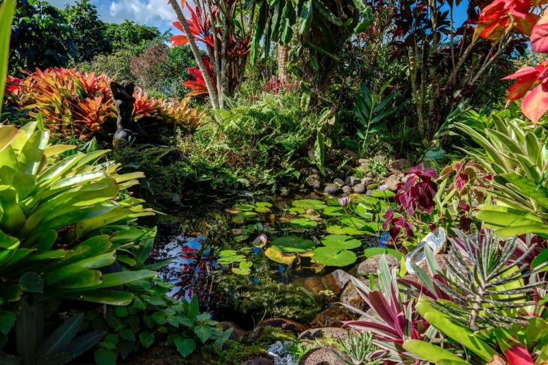 4921 Wailapa #A Pond