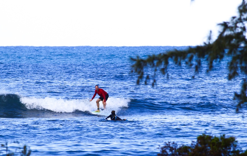 surf riding wave haleiwa oahu