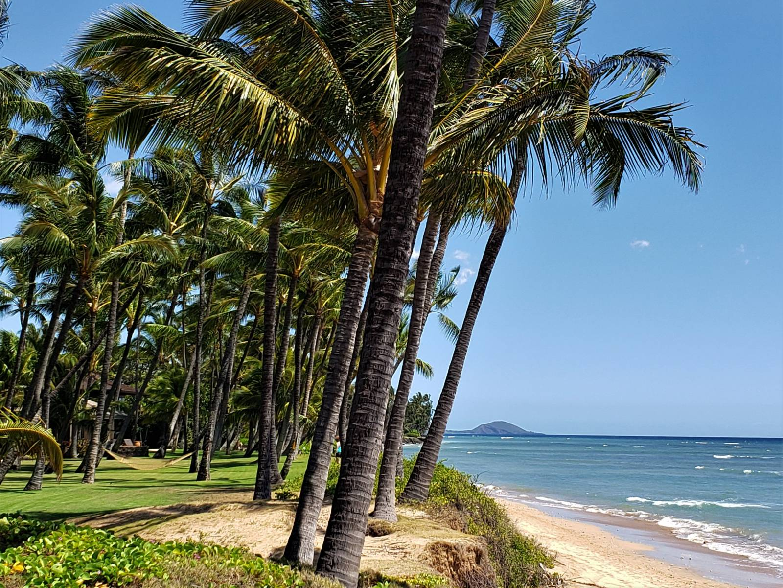 Pros Amp Cons Of Living In Kihei Maui Lifestyle Hawaii