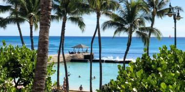 Waikiki_walls