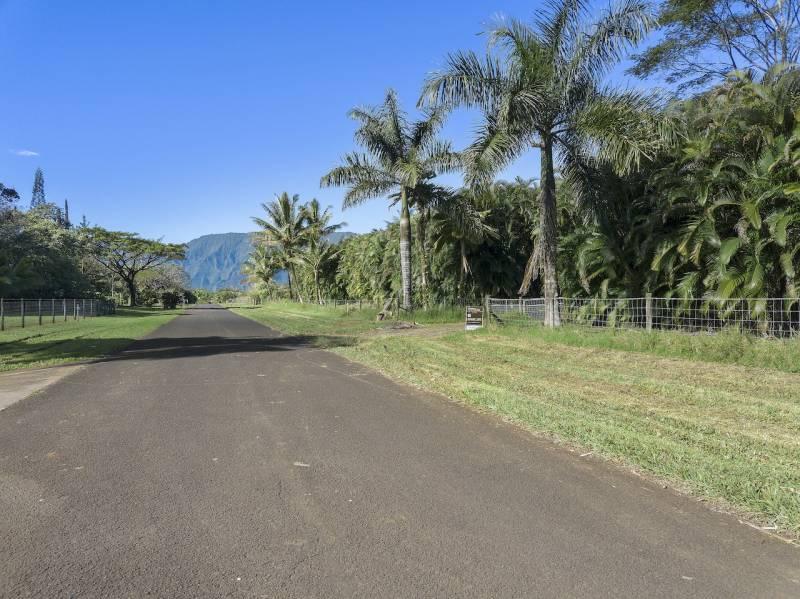 Kalihiwai ridge 2
