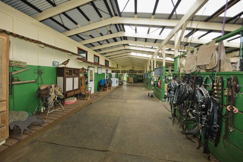 Barn, tack on horse property for sale