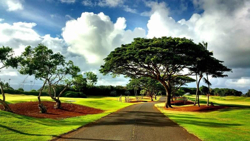 Golf course Kauai Hawaii