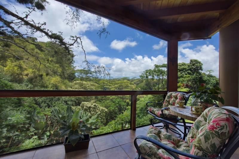Wailua Valley Views