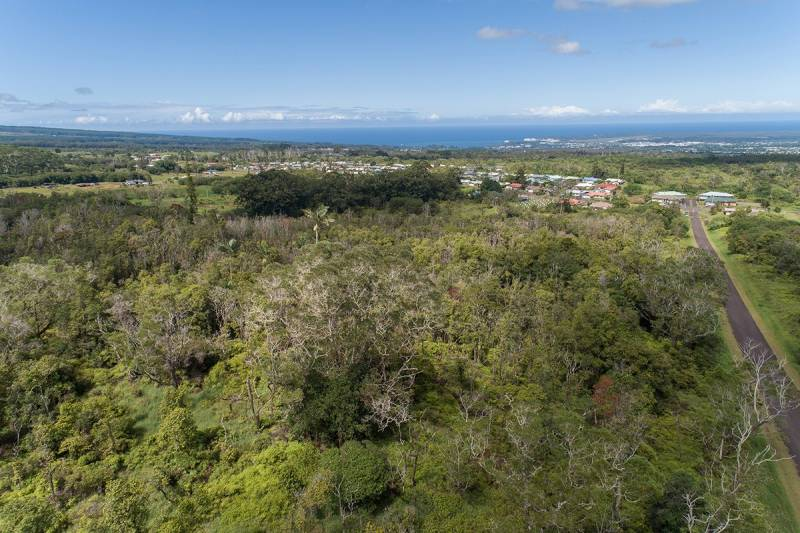 Wooded lots with koa and ʻohia trees