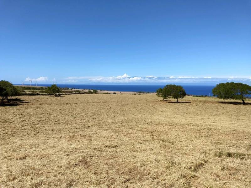 42 acres for sale near Hawi