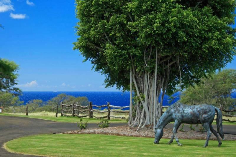 Horse Sculpture Ranch at Puakea