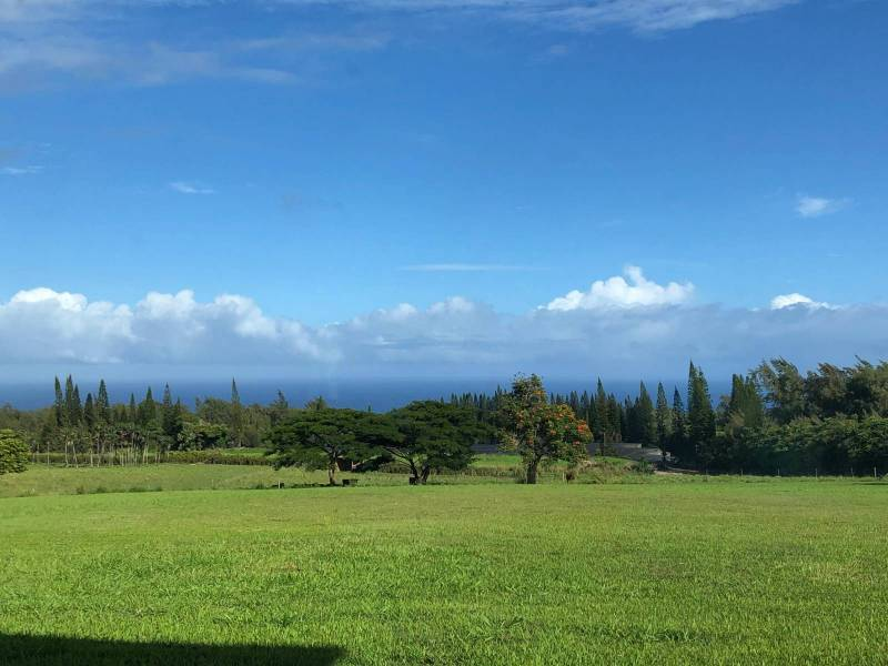27 acres with newly completed home near Hawi