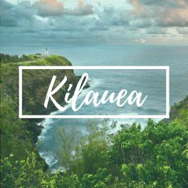 Kilauea Market Report