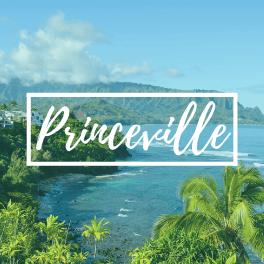 Princeville Market Report