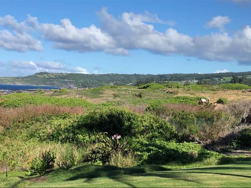 Conservation Easement Kapalua Maui