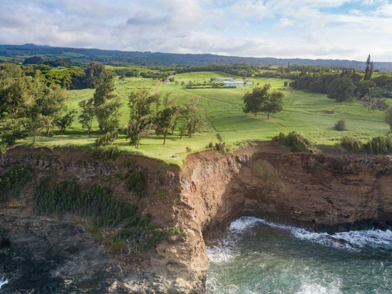 Aerial view of oceanfront horse property near Hawi