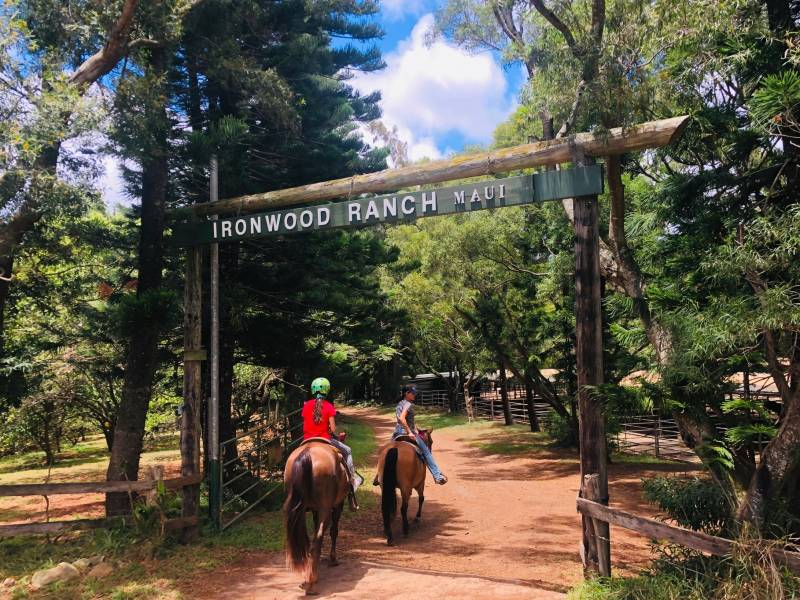 horseback riding on ironwood ranch maui